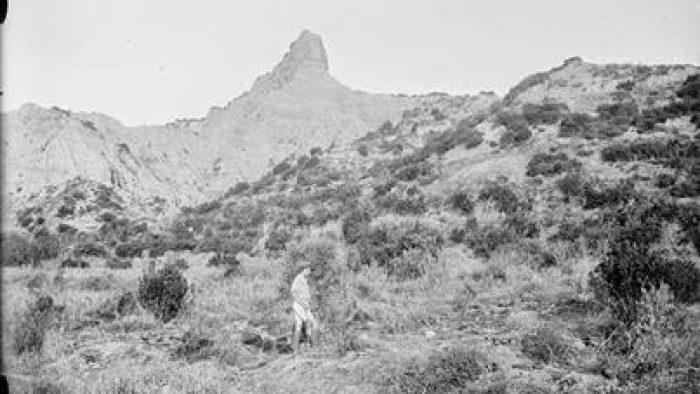 Z Koyu Serçetepe ve Sfenks 1915